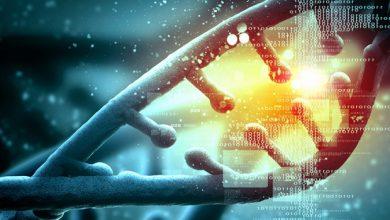 Qatar genomics study reveals key historical and social insights into Arab populations 3