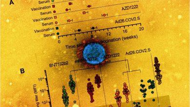 Comparison of Pfizer, Moderna, J&J, AZ vaccines for neutralization titer, against Delta and other variants 4