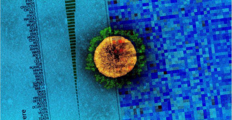 Novel proteomics approach predicts severe COVID-19 outcomes 1