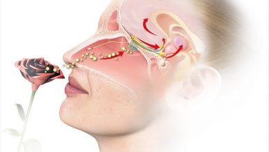 New method to diagnose anosmia 3