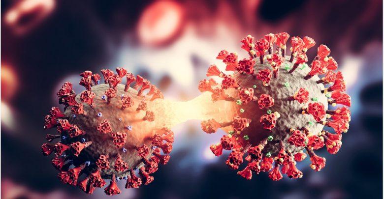 Accumulation of SARS-CoV-2 mutations reduces sensitivity to neutralizing antibodies 1